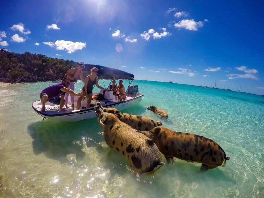Pig Cay.